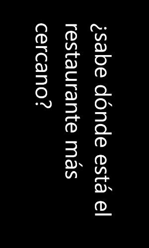 Windows Phone 7 Translator Full-Screen Mode